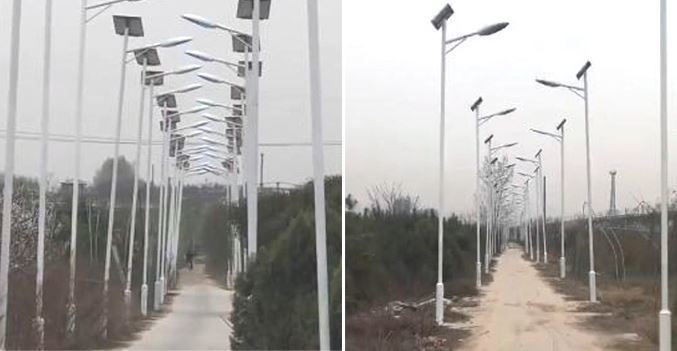 Dựng chi chít hàng nghìn cột đèn cao áp để đòi đền bù