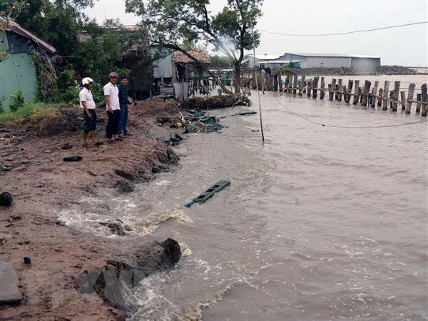 Conference looks to fight coastal erosion in Vietnam's Mekong Delta