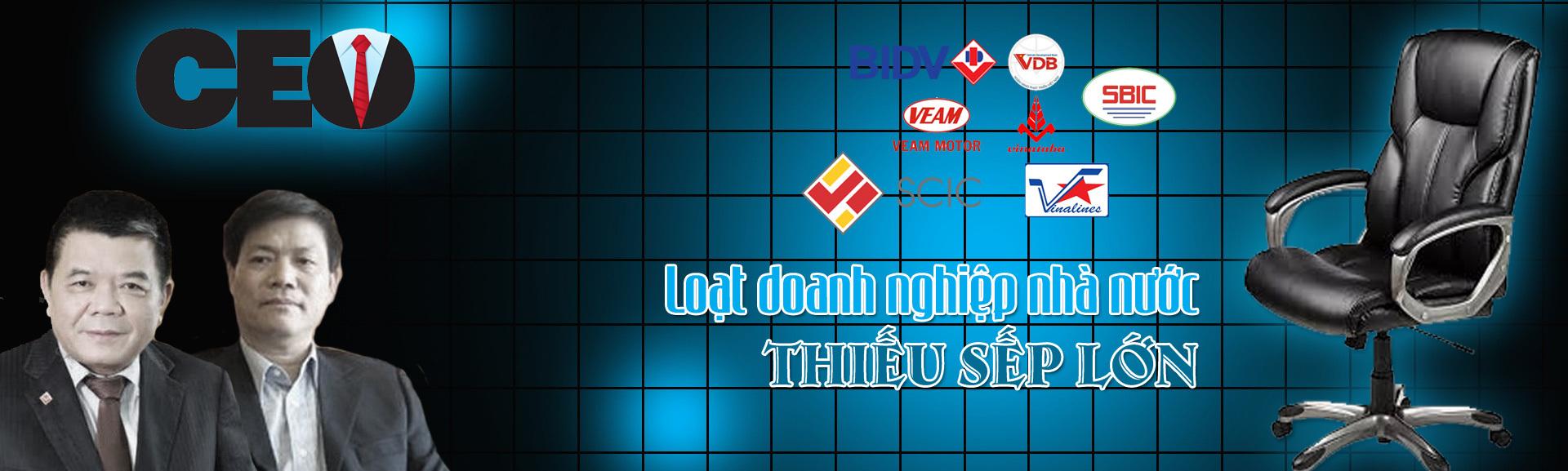 BIDV,Trần Bắc Hà,Vinashin,SBIC,VEAM,VDB,Vinalines,sếp doanh nghiệp nhà nước,sếp tập đoàn