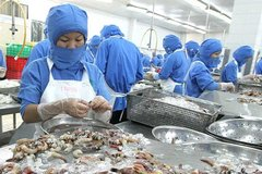 Vietnamese shrimp exempted from U.S. antidumping duty