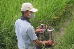 Vietnam bans glyphosate-based weed-killers
