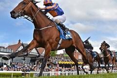 Đà Nẵng chơi lớn: Làm trường đua ngựa, truyền hình vệ tinh ra toàn cầu