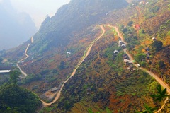 Happiness road to plateau of beauty