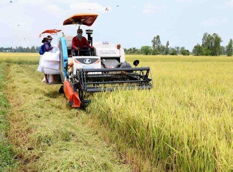 Global shocks pose threats to Vietnam's economy