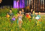 Hue sets its sights on reviving the ao dai