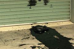 Công ty ở Hải Phòng bị đổ cả xô chất bẩn 'dằn mặt'
