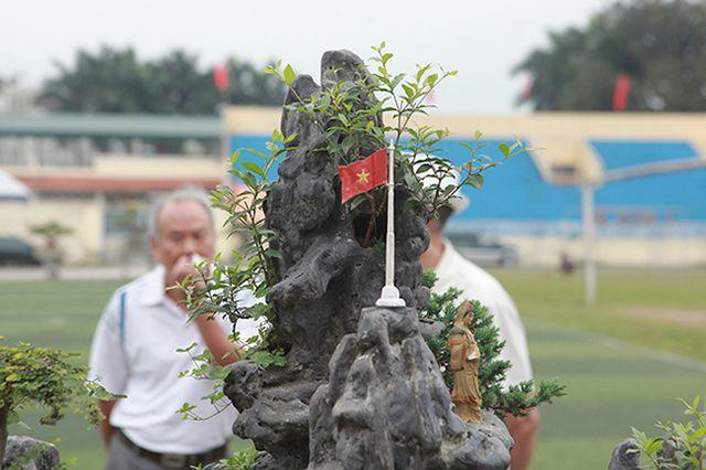 Chiêm ngưỡng 'Việt Bắc thu nhỏ' được 'hét' giá 500 triệu