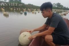 Bí mật kho báu 4 tỷ giấu dưới đáy đầm ở Ninh Bình