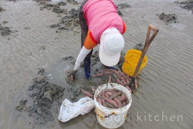 Khách 'đỏ mặt' khi lần đầu ăn cá dương vật (+video) Ca-duong-vat-2