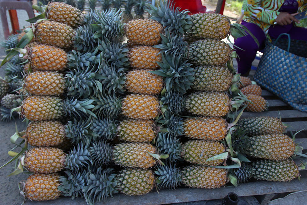 Kiên Giang,trái cây