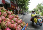 Fruit export challenges await with China's tighter border trade