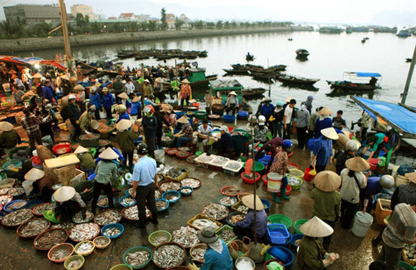 Fishy delights in Quang Ninh