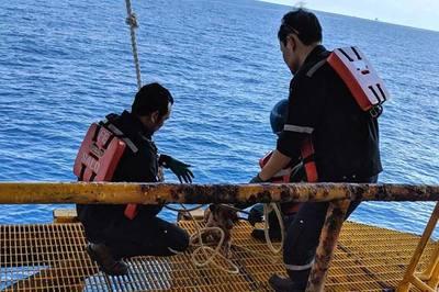 Giải cứu chú chó lênh đênh trên biển, cách bờ 220km