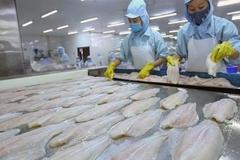Shrimp escape anti-dumping duty as catfish exporters await tariff decision