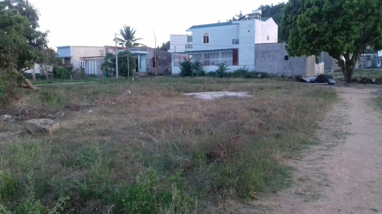 đất công,giấy chứng nhận quyền sử dụng đất,Khánh Hòa