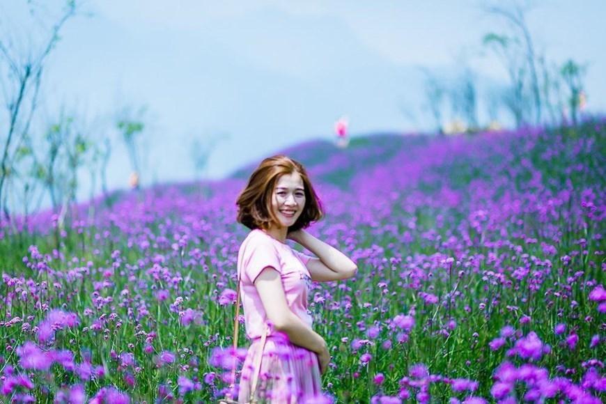 Fansipan flower valley enchants visitors