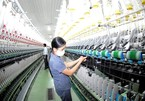 Vietnam's garment, textile industry expected to lure much foreign investment this year