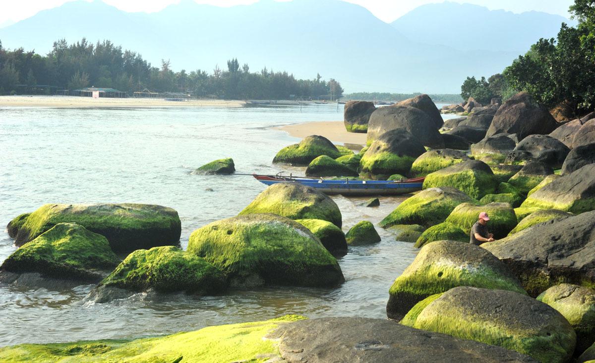 rau mứt,rong biển,Thừa Thiên Huế