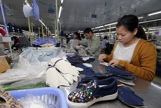 VN urged to improve economic resilience