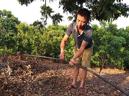 công nghệ 4.0,nông dân làm giàu