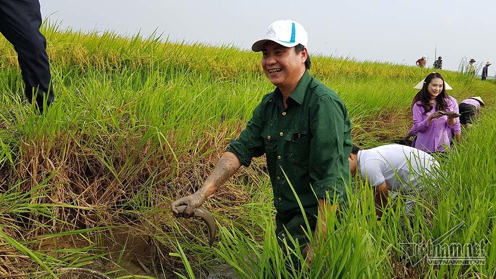 nông nghiệp hữu cơ,nông nghiệp sạch,lúa hữu cơ,Quảng Trị
