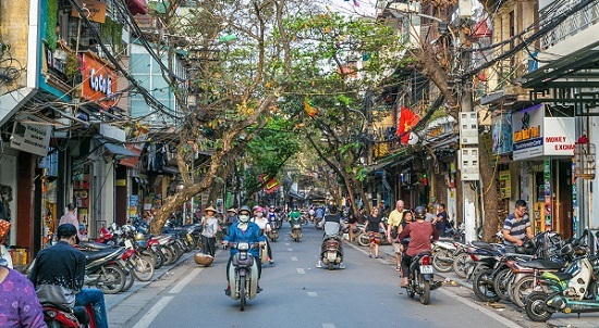 Hanoi to relocate trees for road expansion