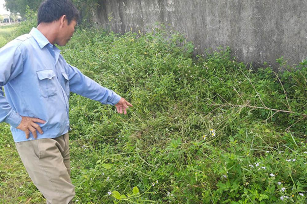 Nghi án bé gái lớp 2 ở Nghệ An bị 2 nam sinh xâm hại