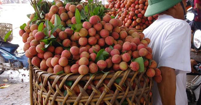 nông sản Việt,xuất khẩu nông sản,thị trường Trung Quốc
