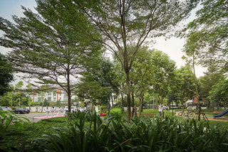 Giải mã nhu cầu tìm không gian xanh trong nội đô Hà Nội