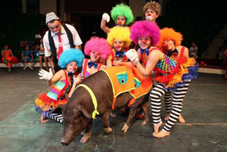 Circus acts to brighten up the summer