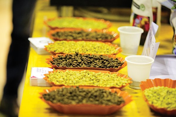 Coffee price slides, farmers and merchants incur losses