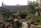 Bên trong nhà vườn rộng 700 m2 ở Hà Nội