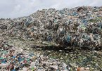 Waste company seeks help to deal with dumped fetuses
