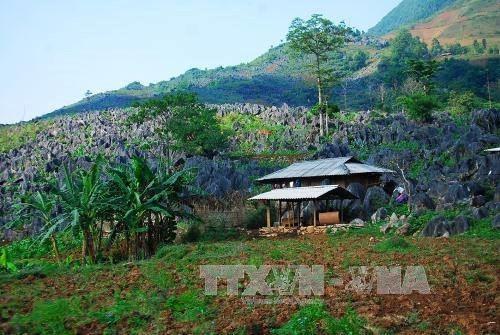 Tua Chua Karst Plateau