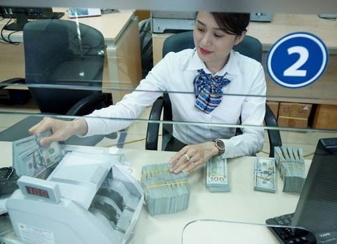 Exchange rate in Vietnam forecast to be stable in 2019