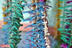 Thach Xa bamboo dragonflies
