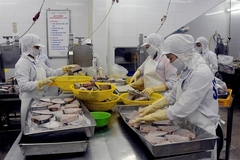 Mitsui & Co invests $155 million in Vietnamese seafood company