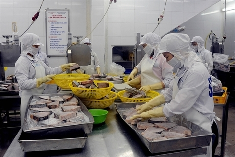 EC to review yellow card on Vietnamese seafood in November
