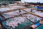 Dân treo biển bán nhà trốn ô nhiễm từ nhà máy AB Mauri, Bộ TN&MT vào cuộc