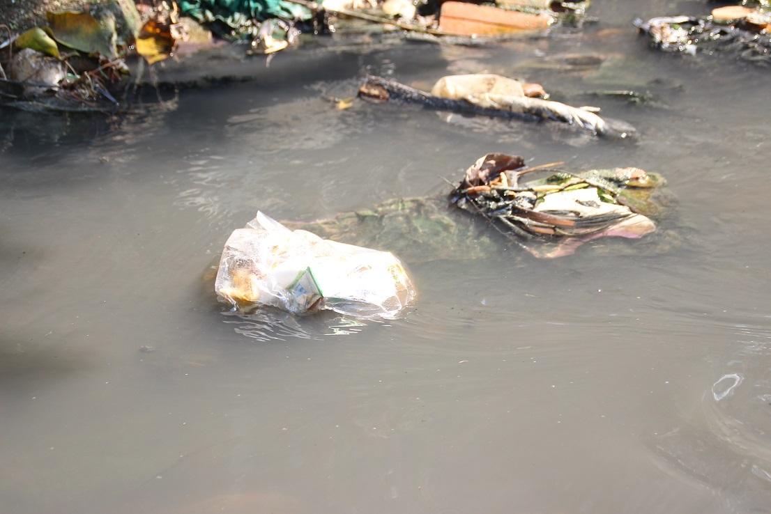 ô nhiễm,Đà Nẵng