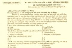 Vĩnh Phúc công bố đề thi minh họa môn Ngữ văn vào lớp 10 năm 2019