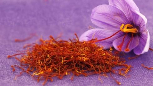 nhụy hoa nghệ tây,saffron,vàng đỏ,đặc sản nhà giàu