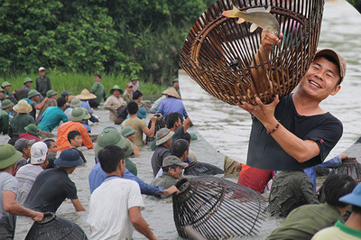 Hà Tĩnh: Sau tiếng hô, cả làng ào xuống đầm thi bắt cá cầu may