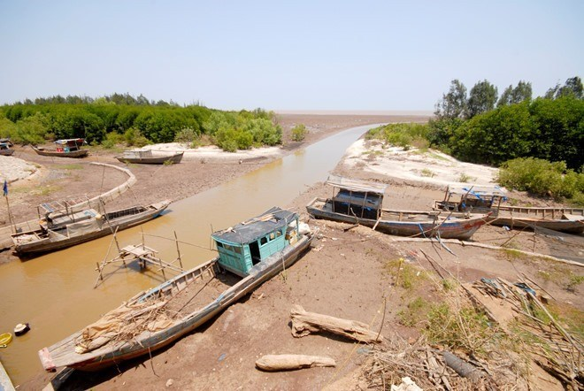 Tien Giang's coastal area manages to cope with drought