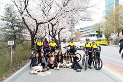 Vietnamese rush to travel South Korea as tour prices drop