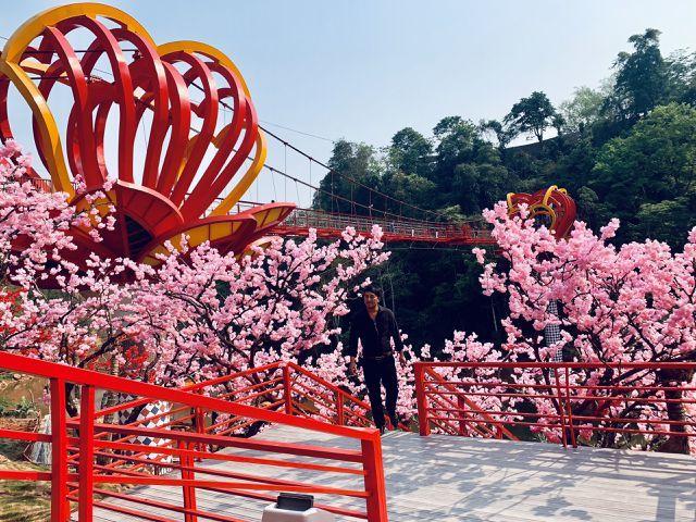 5D-effect glass bridge worries female visitors