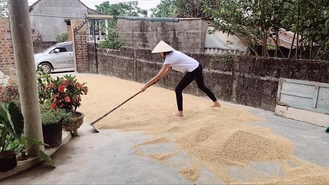 Hình ảnh trái ngược của các chân dài sang chảnh khi về quê cào lúa, rửa bát