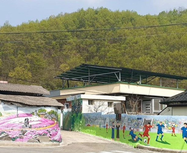 Park Hang-seo's home adorned with Vietnamese football murals
