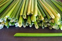 Vietnamese make next-generation straws, friendly to environment