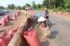Người dân đội nắng gom 30 tấn điều giúp tài xế bị lật xe